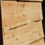larch clapboard